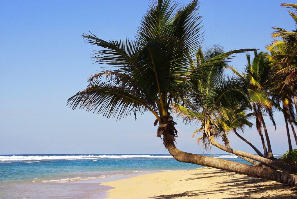 Reservas antecipadas   Punta Cana